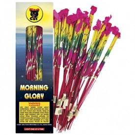 "Sparklers - Morning Glory 14"" Bamboo (Bx of 24- 6pks) - $15.00"